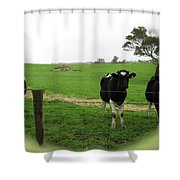 N'gombe Shower Curtain