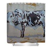 Nguni Bull Shower Curtain