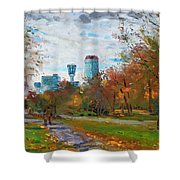Niagara Falls Park Shower Curtain