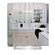 Nice Bathroom Shower Curtain