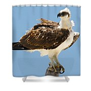 Nice Breeze Shower Curtain