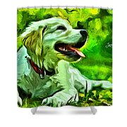 Nice Dog Shower Curtain
