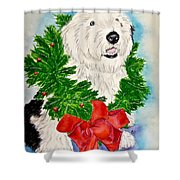 Nicholas Christmas 2013 Shower Curtain