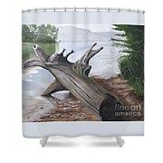 Nickajack Driftwood Shower Curtain