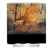 Nickleplate Road  Shower Curtain