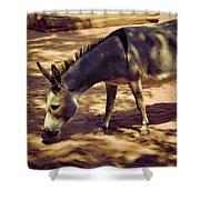 Nigerian Donkey Shower Curtain