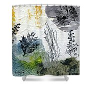 Night And Day In The Forest Shower Curtain