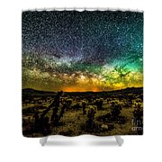 Night At Cholla Cactus Garden Shower Curtain