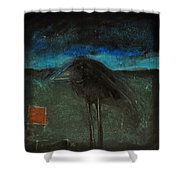 Night Bird With Red Square Shower Curtain