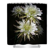 Night Bloomers 4.21 Shower Curtain