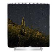 Night Cactus Shower Curtain