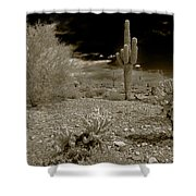 Night Falls On The Saguaro Shower Curtain