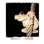 Night Frog Shower Curtain