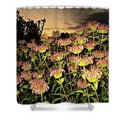 Night Garden Series Shower Curtain