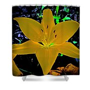 Night Glow Lily Shower Curtain
