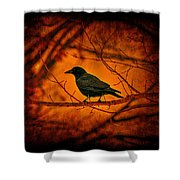 Night Guard Shower Curtain