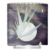 Night Hawke 2 Shower Curtain