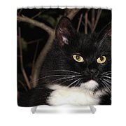 Night Hunter Shower Curtain