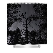 Night In The Druid Cathedral Shower Curtain