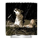 Night Lioness Shower Curtain