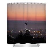 Night Owl Over San Francisco Shower Curtain