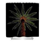Night Palm Shower Curtain