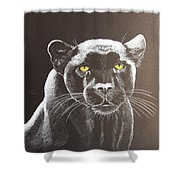 Night Reflection Shower Curtain