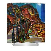 Night Serpentine Shower Curtain
