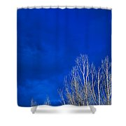 Night Sky Shower Curtain by Steve Gadomski