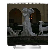 Night View Of Fountain In Front Of The Arlington Hotel, Arkansas, Ar Shower Curtain