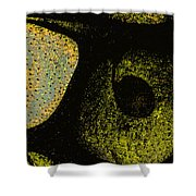 Night Vision Shower Curtain