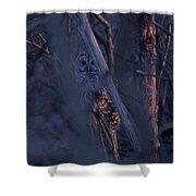 Night Watchman Shower Curtain