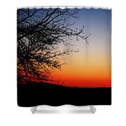 Nights Beauty Shower Curtain