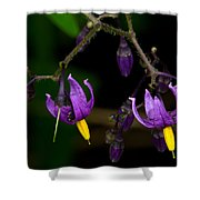 Nightshade Wildflowers #5616 Shower Curtain