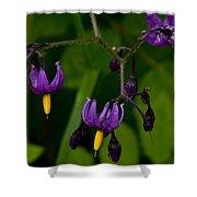 Nightshade Wildflowers #5633 Shower Curtain