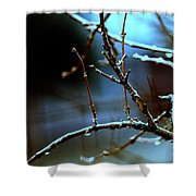 Nighttime In The Garden Shower Curtain