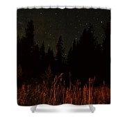 Nighttime Meadow  Shower Curtain