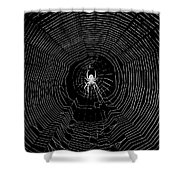 Nighttime Spider And Web Shower Curtain