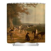 Nine Greyhounds In A Landscape Shower Curtain