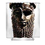 Nineveh: Bronze Head Shower Curtain