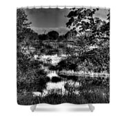 Nisqually Ponds Shower Curtain