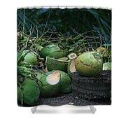 Niu Hawaiian Coconuts Hooululahui Kahekilinui Wailuku Shower Curtain