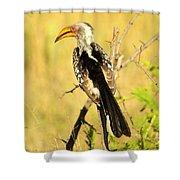 Nkorho Shower Curtain