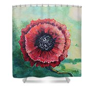 No. 13 Spring And Summer Floral Series Shower Curtain