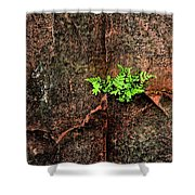 No Barriers To Growth Shower Curtain