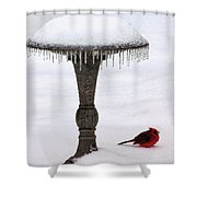 No Bath Today Shower Curtain