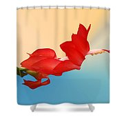 No Fear Of Flying Shower Curtain