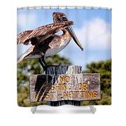 No Fishing Baby Pelican Shower Curtain