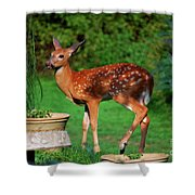 No I'm Not Bambi Shower Curtain