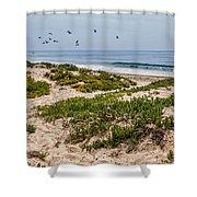 Carpinteria State Beach Shower Curtain